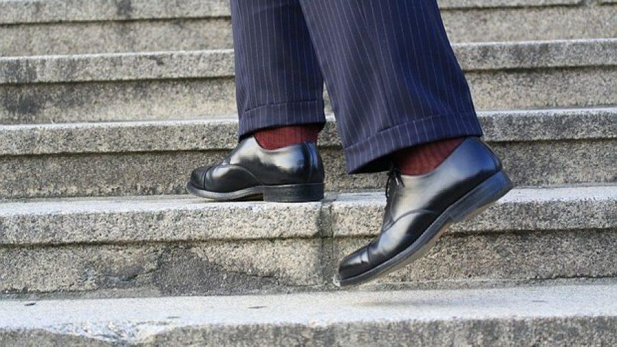 Grundwissen Schuhpflege